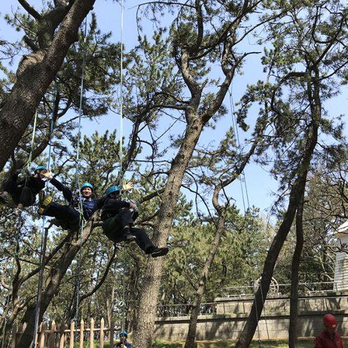 ドン山で木登り体験